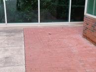 Nashville Warbler at the northwest alcove.
