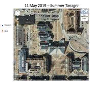 Screen Shot 2019-05-11 at 10.26.43 AM